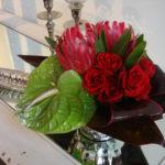 creating-roses-pincushions-anthutium